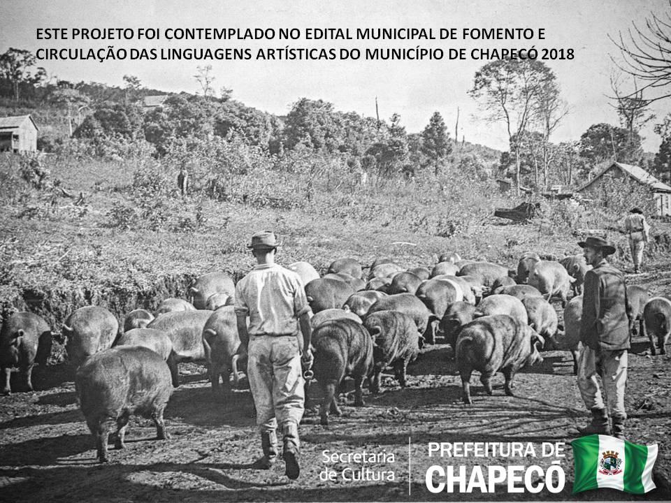 Entre trilhas e caminhos: a importância do tropeirismo no desenvolvimento de Chapecó