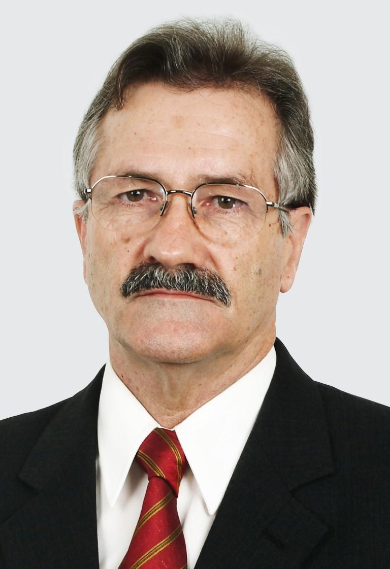 Mário Lanznaster  (em memória)